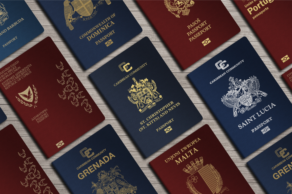 Do you need a second passport and can you afford it?